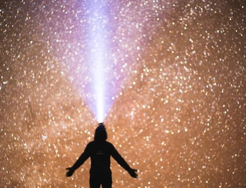 LED Growing – Die besten Growbox Beleuchtungen