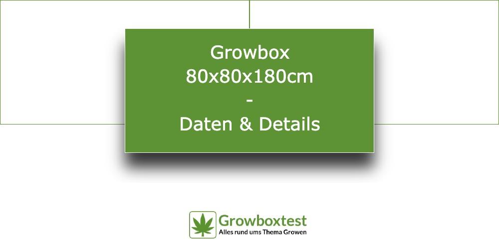 Growbox 80x80x180 - die wichtigsten Infos 4