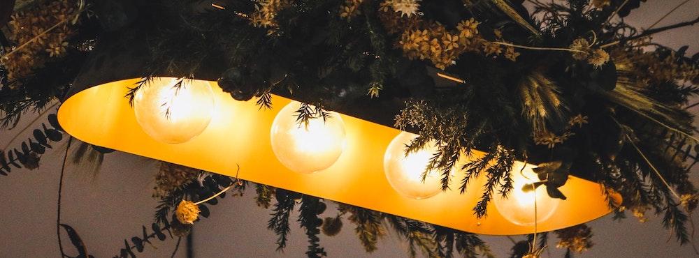 CMH Lampe - die neue Generation für den Indoor Grow 1